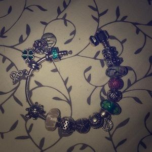 Entire bracelet and charms